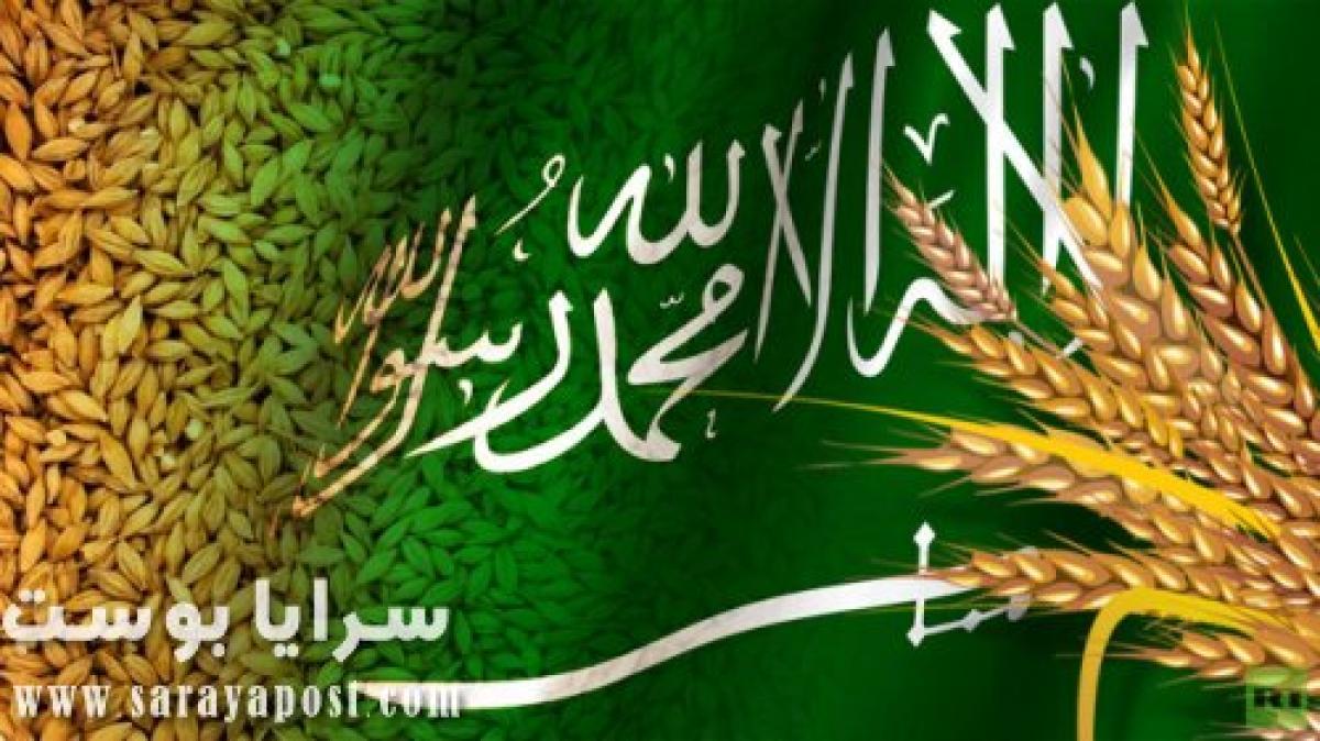 السعودية تدعو المستثمرين بالخارج لتوريد 355 طن قمح