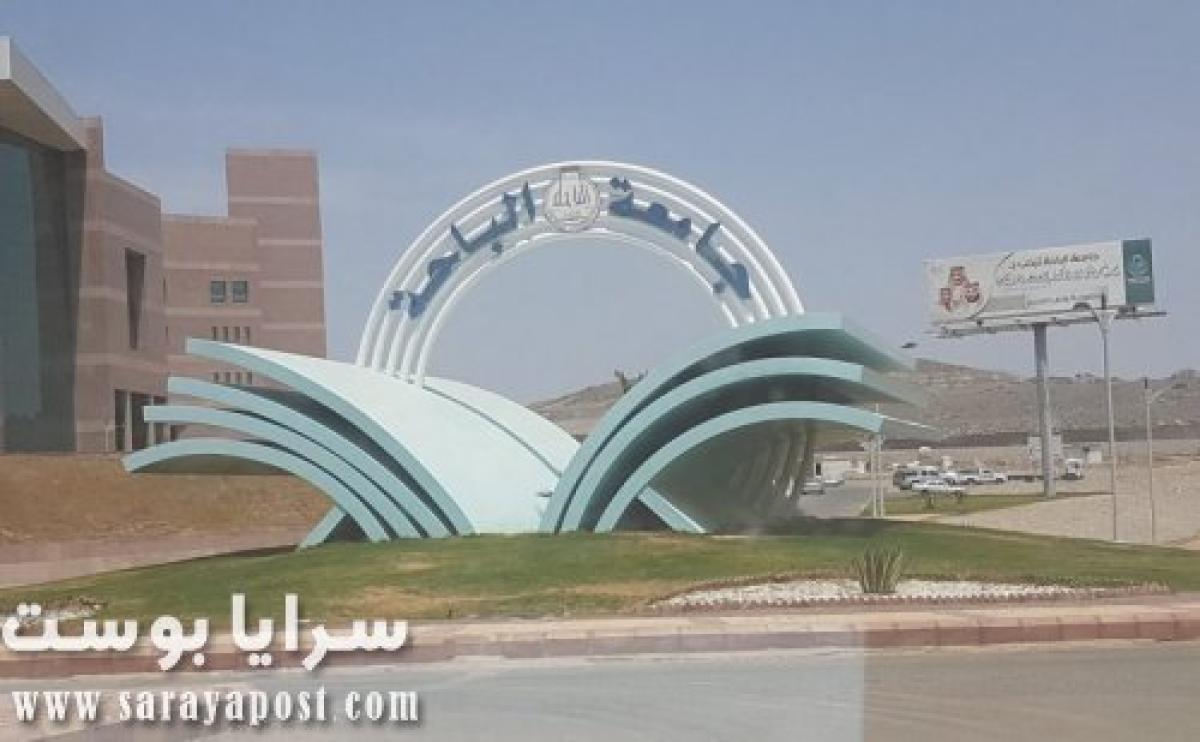 """جامعة الباحة : أكثر من 96 ألف مستخدم عبر برنامج """"رافد"""" تعليم عن بعد"""