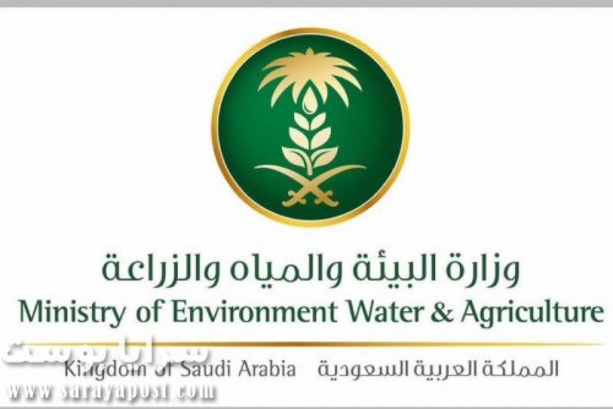 البيئة السعودية: إيداع 59 مليون ريال في حسابات مربي الدواجن