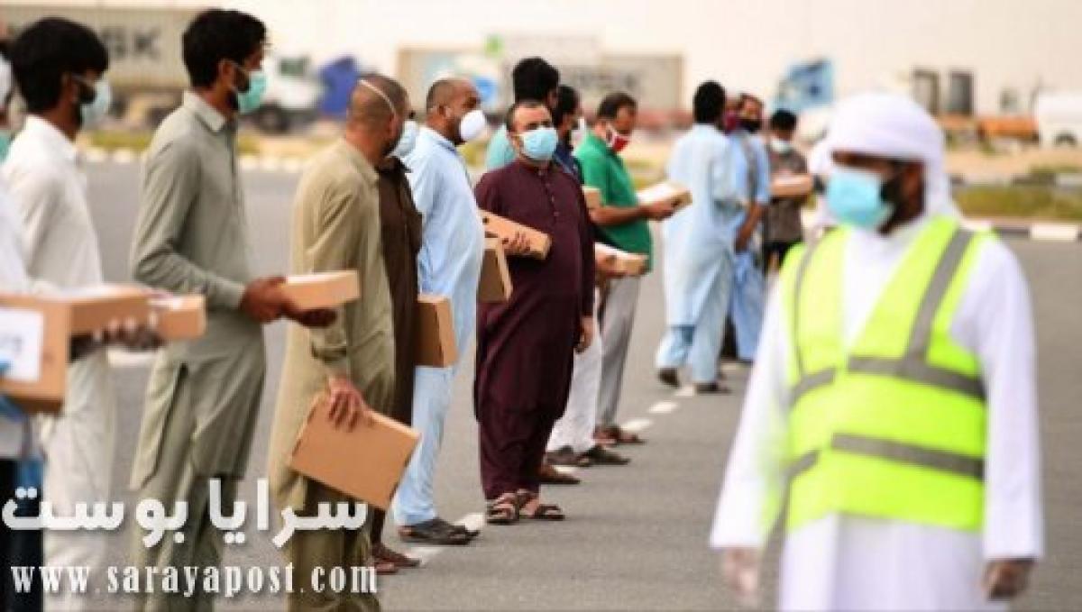 آخر أخبار العمالة في عمان.. إغلاق منصة حماية ومغادرة الوافدين أراضي السلطنة