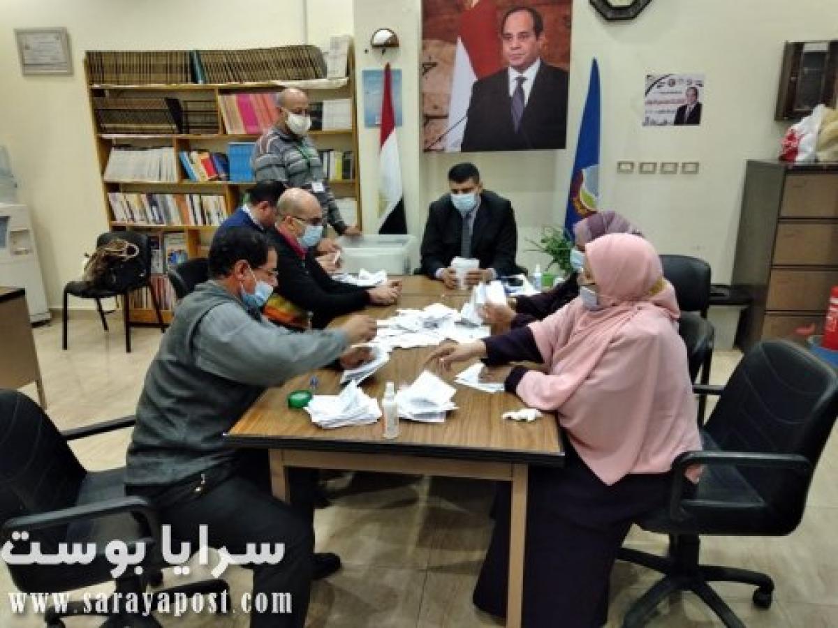 نتيجة إعادة انتخابات مجلس النواب 2020 في دوائر محافظة البحيرة