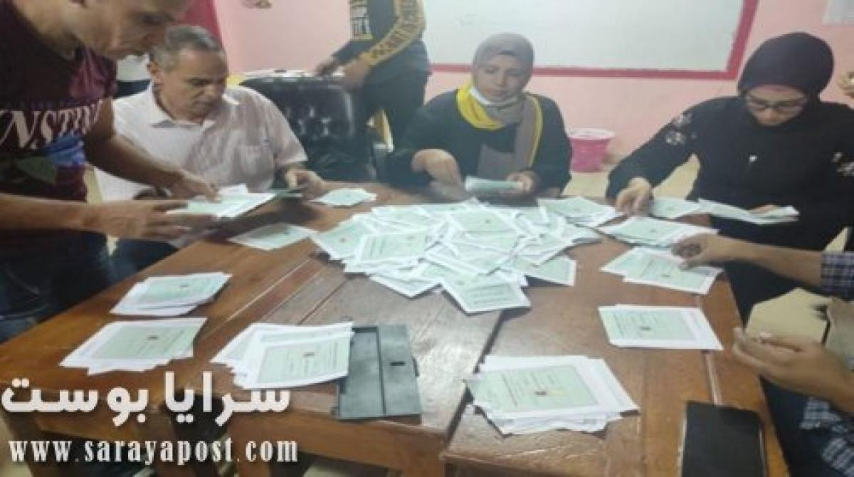 نتيجة انتخابات الإعادة في البدرشين| فوز عماد الدرجلي وحازم جودة بمقعدي الدائرة
