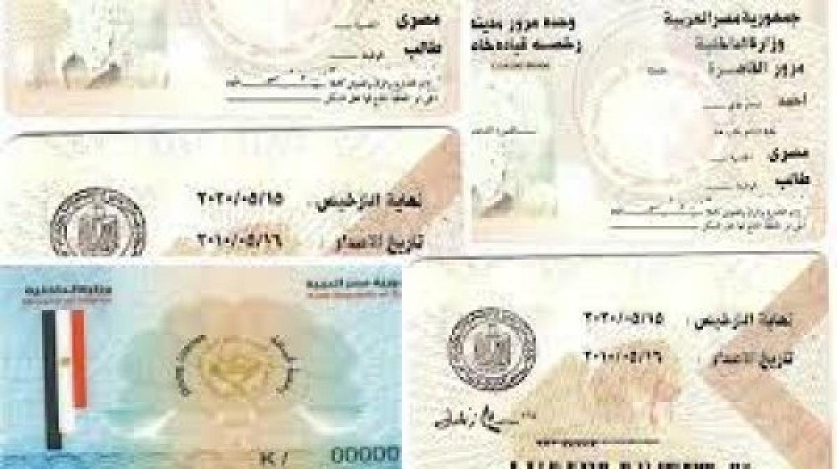 بوابة مرور مصر استعلام مخالفات المرور وتجديد رخصة القيادة واستخراج بدل فاقد