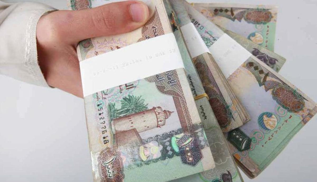 «المركزي»: 15 مليار درهم ودائع الأفراد في البنوك خلال 5 أشهر