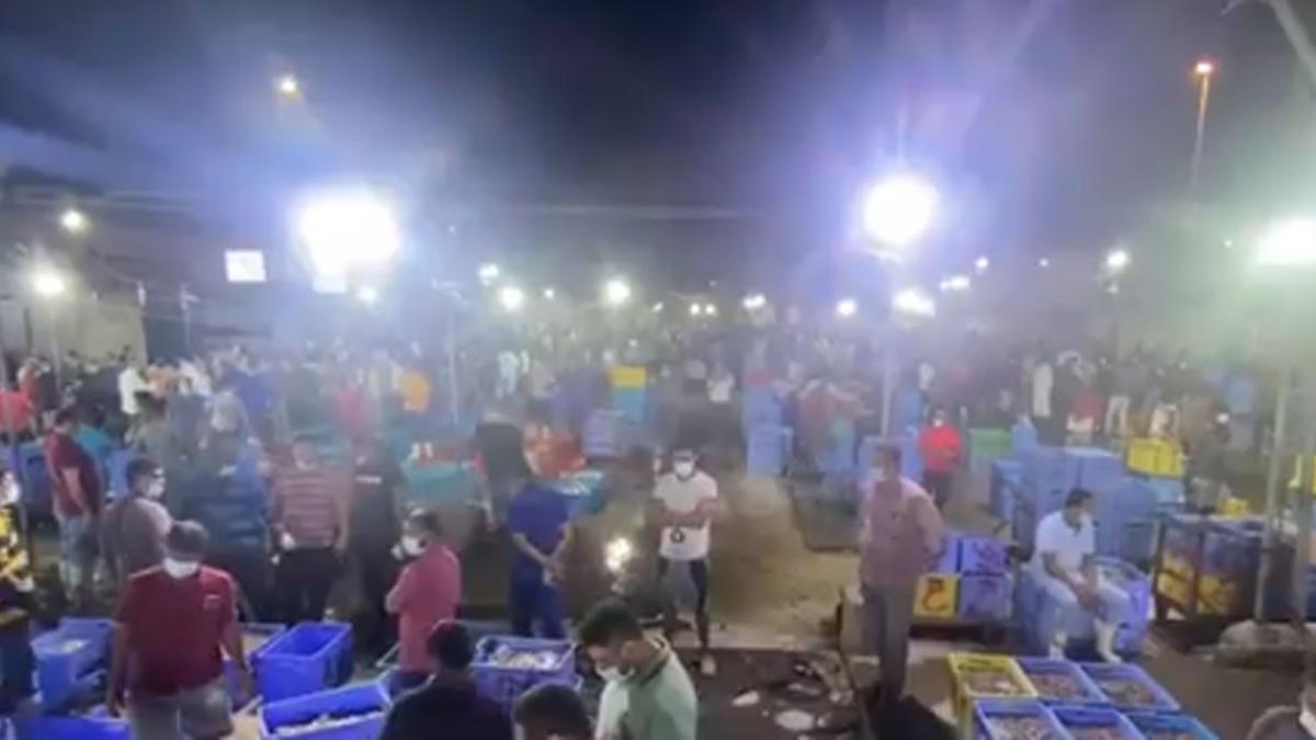 بالفيديو .. سوق السمك في القطيف.. كوارث صحية بأيدي عمالة مخالفة