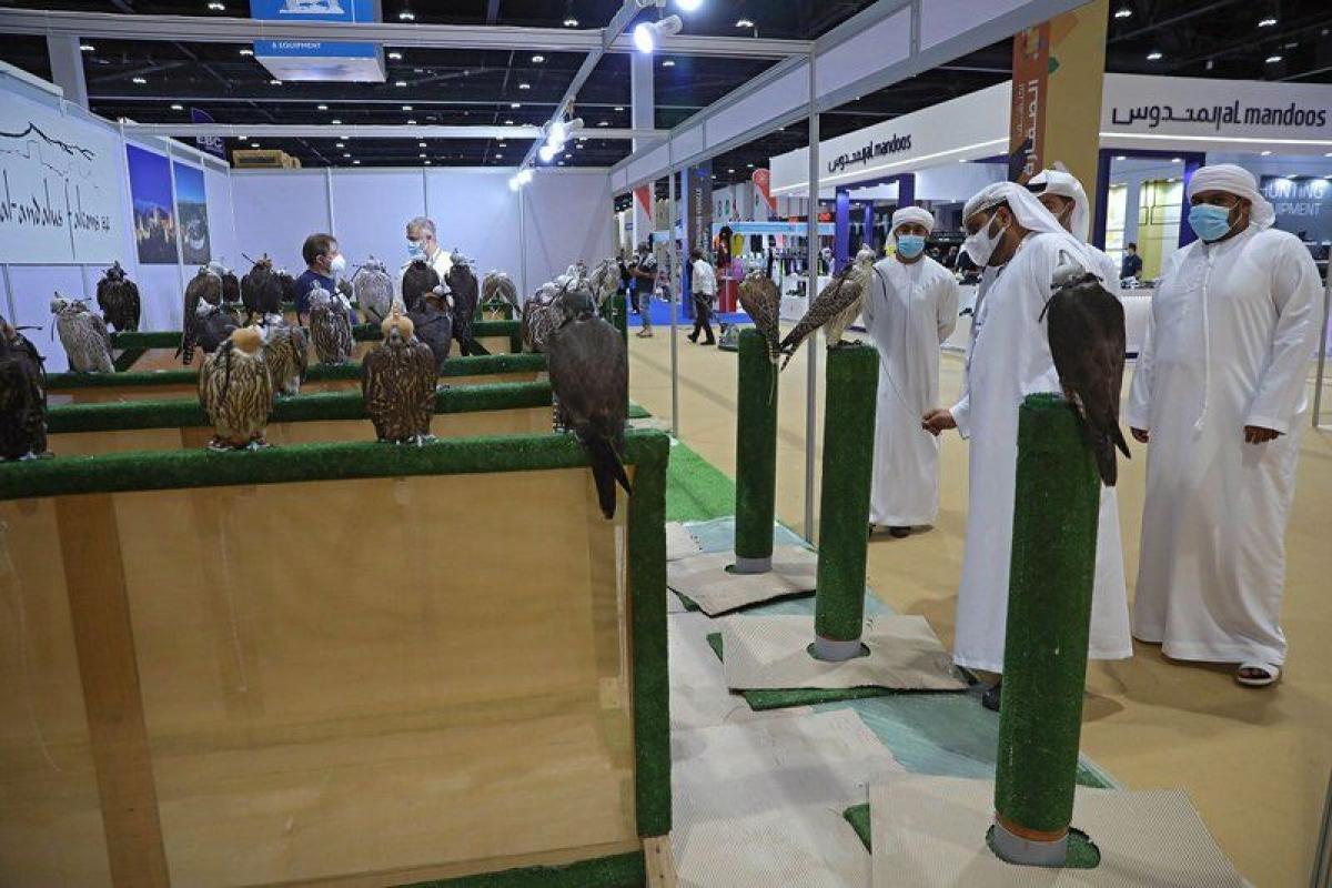 بالصور مشاركات سعودية في المعرض الدولي للصيد والفروسية بحضور 44 د