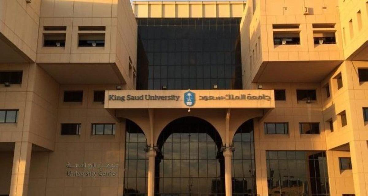 نظام الجامعات الجديد نقلة نوعية.. فماذا سيتغير في الجامعات الثلاث
