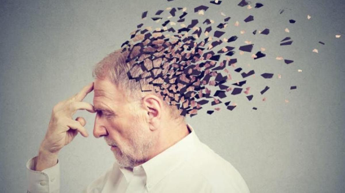 علماء يطورون نموذجا من الدماغ لدراسة أسباب وطرق علاج الزهايمر