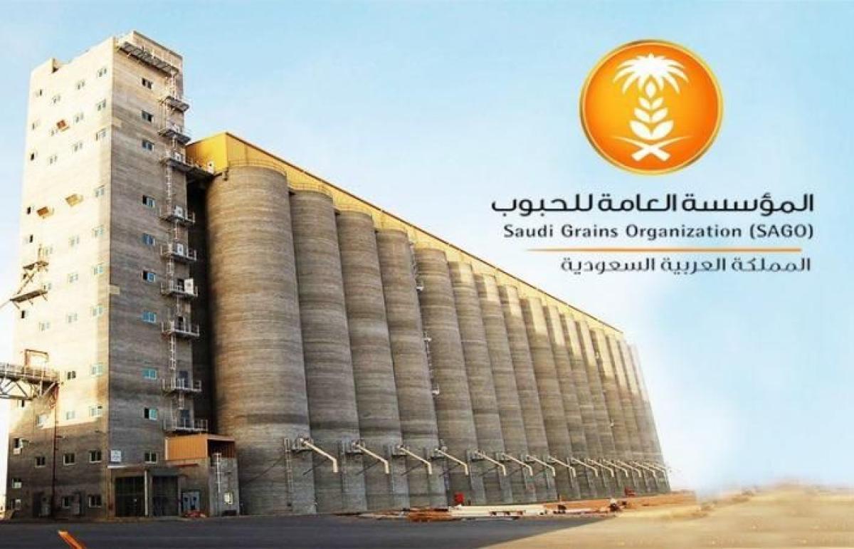 المؤسسة العامة للحبوب تقرر صرف مستحقات الدفعة الـ 14 لمزارعي القمح المحلي أبرز المواد