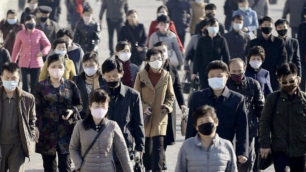الصحة العالمية: بدء شحن إمدادات طبية متعلقة بكورونا إلى كوريا الش