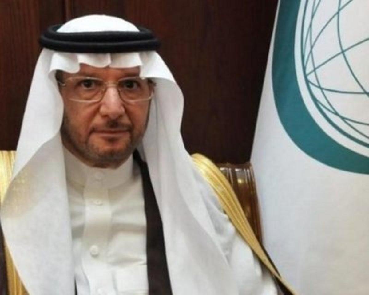 """""""التعاون الإسلامي"""" تُدين الهجوم الحوثي الجديد على مطار أبها بطائر"""