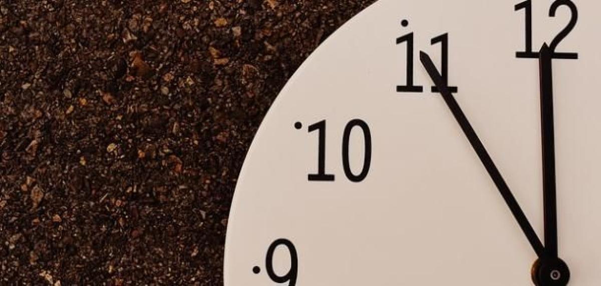 مختص: الكافيين يحتاج إلى 40 دقيقة ليؤثر في كل خلايا الجسم و12 ساعة للخروج منه (فيديو) أبرز المواد