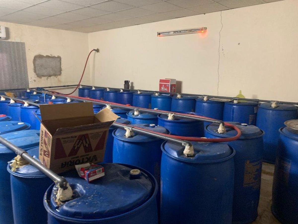 دوريات الأمن السرية تضبط مصنعاً بداخله 100 برميل لتصنيع الخمر شرق