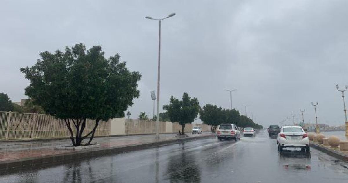"""""""الأرصاد"""": أمطار مصحوبة برياح نشطة على منطقة تبوك أبرز المواد"""